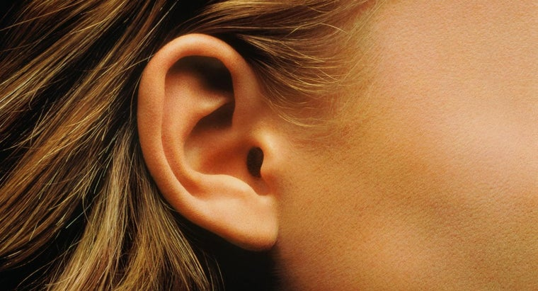 What's a Good Way to Find Stock Images of Ears?