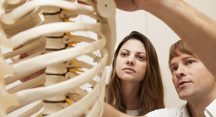 What Are Some Early Warning Signs of Osteoporosis?