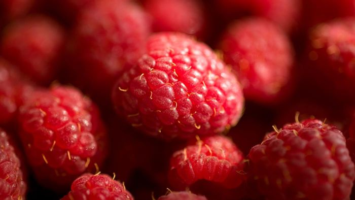 Do Raspberries Keep Well When Frozen?