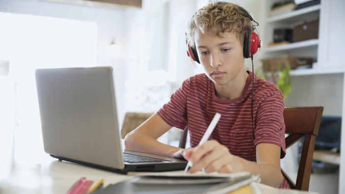 What Are Some Schools That Offer Tests Online?