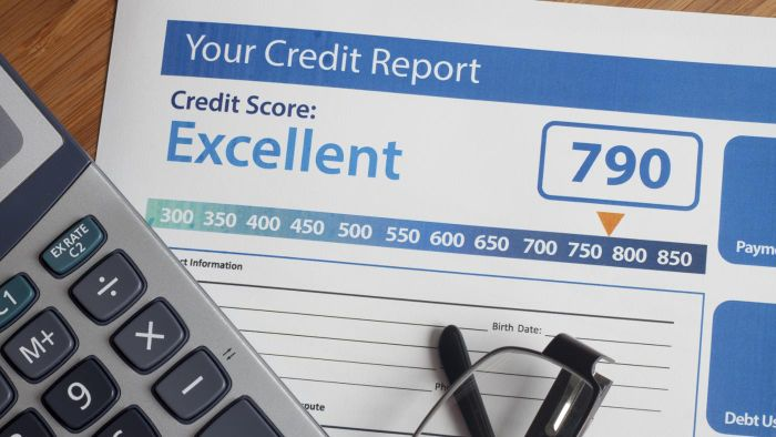 What Are TransUnion Credit Disputes?