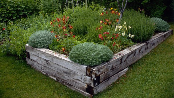 What Is a Good Wood to Use for a Raised Garden Bed?