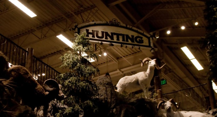 Is There a Bass Pro Shop in Harrisburg, Pennsylvania?