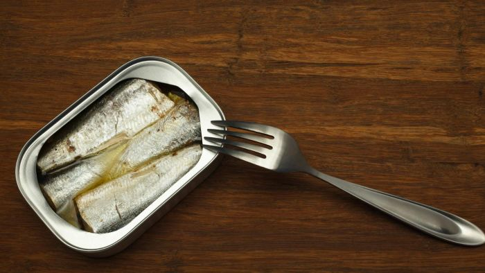 What Is the Shelf Life of Canned Sardines?