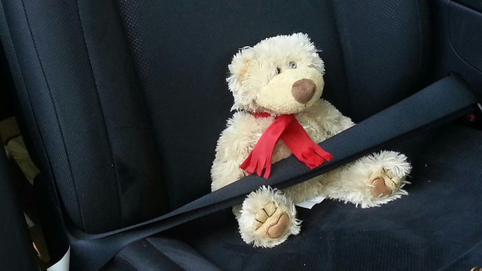 How Do You Tighten a Seat Belt?