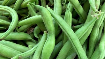 What Are Some Ways to Prepare Fresh Green Beans?