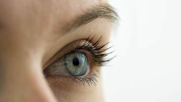 What are some good creams for the eyelids?