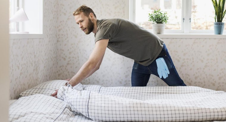 How Do You Kill Bed Bugs on Beds at Home?