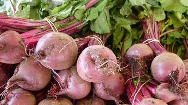 What Ingredients Do You Need to Cook Fresh Beets?