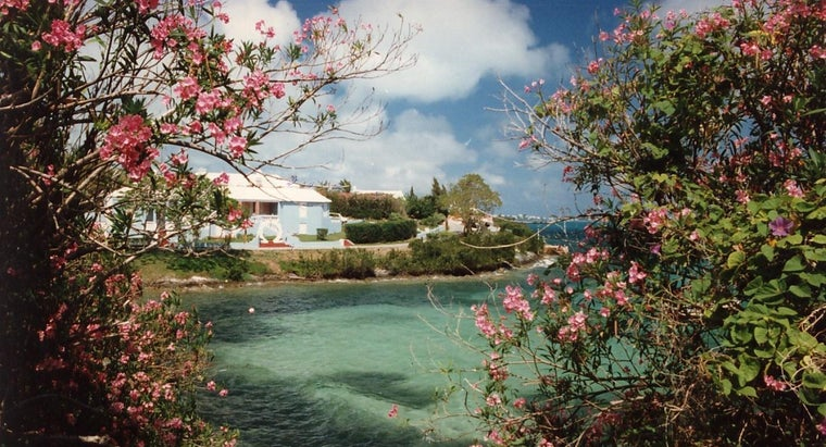 When Should You Go to Bermuda for Vacation?
