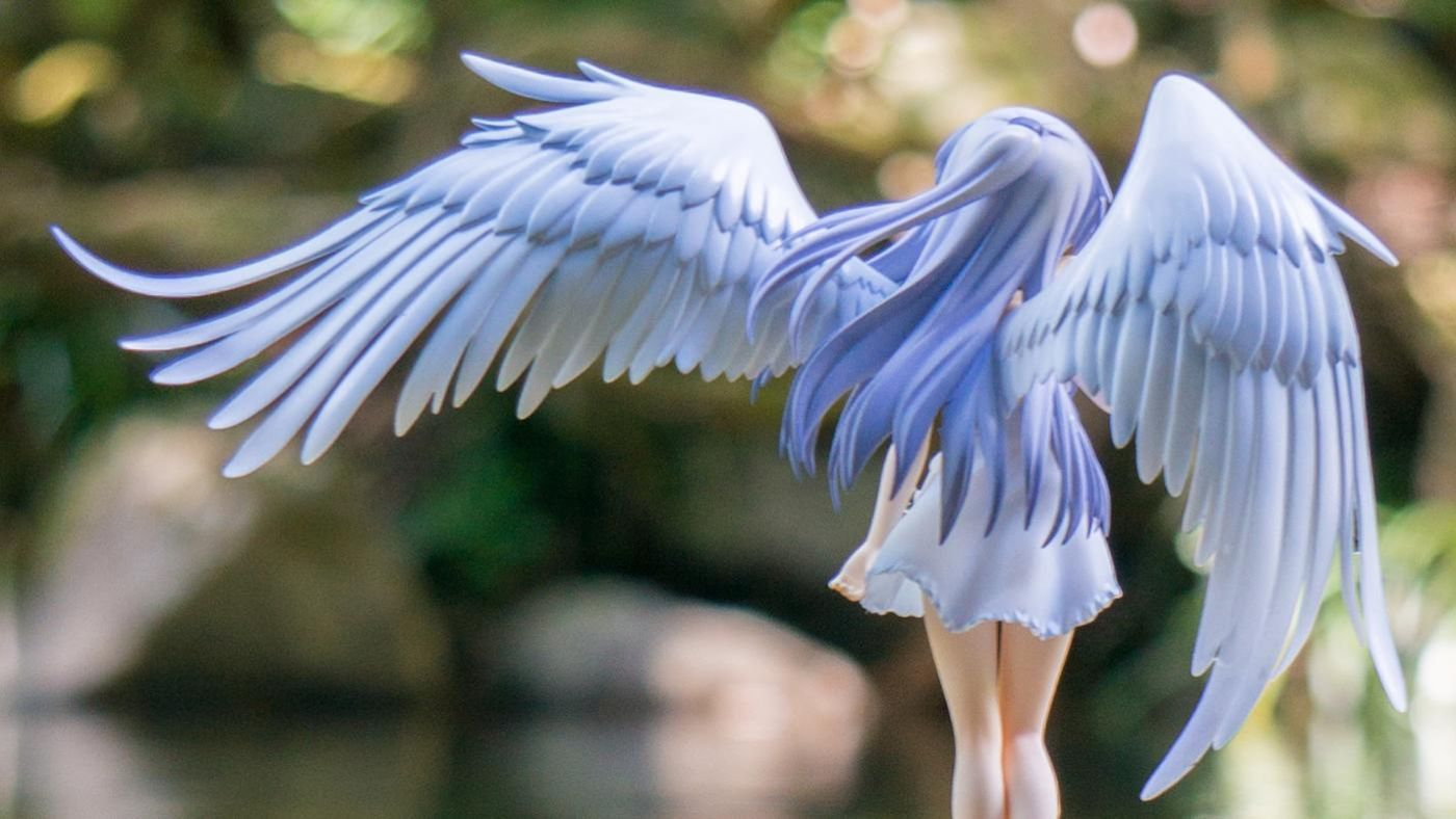 What do angel wings symbolize reference buycottarizona