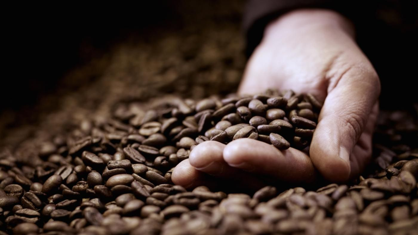 Can You Eat Green Coffee Beans Raw