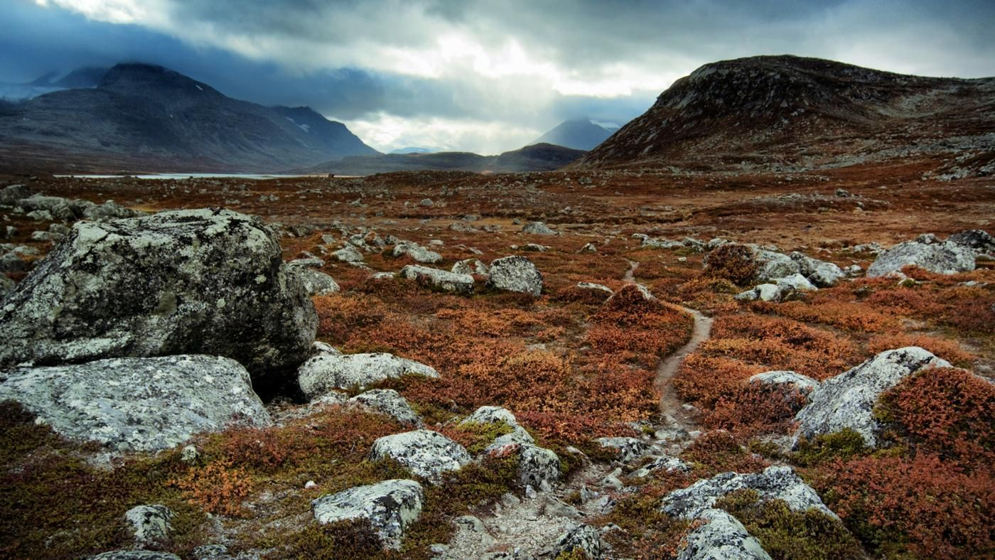 Pictures of tundra climate