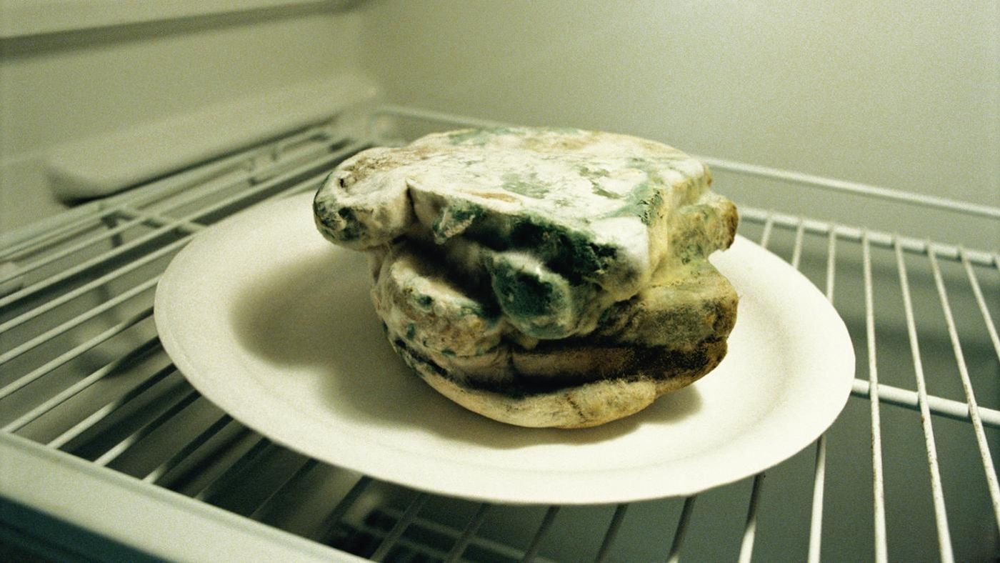 Why does mold grow on bread - What to do about mold ...