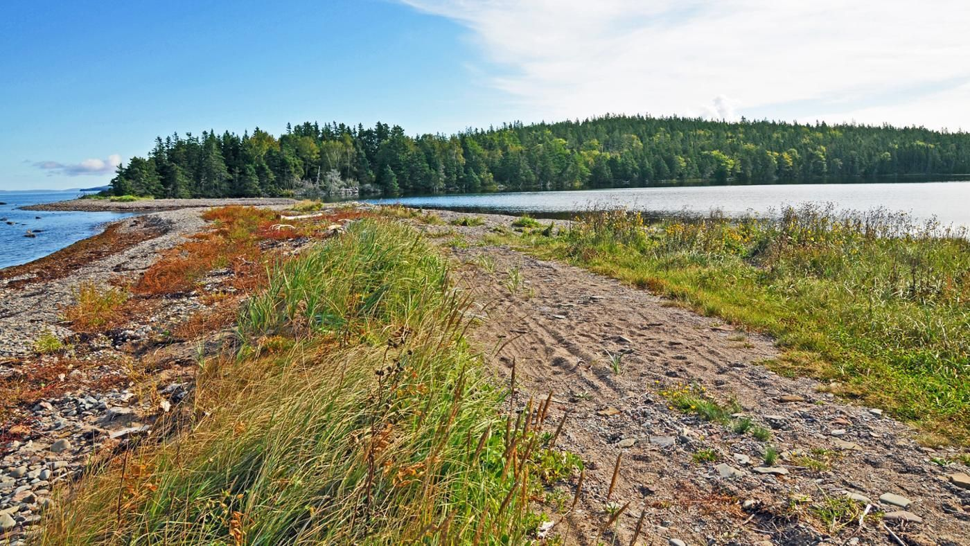 What Are Some Natural Resources Found In Canada
