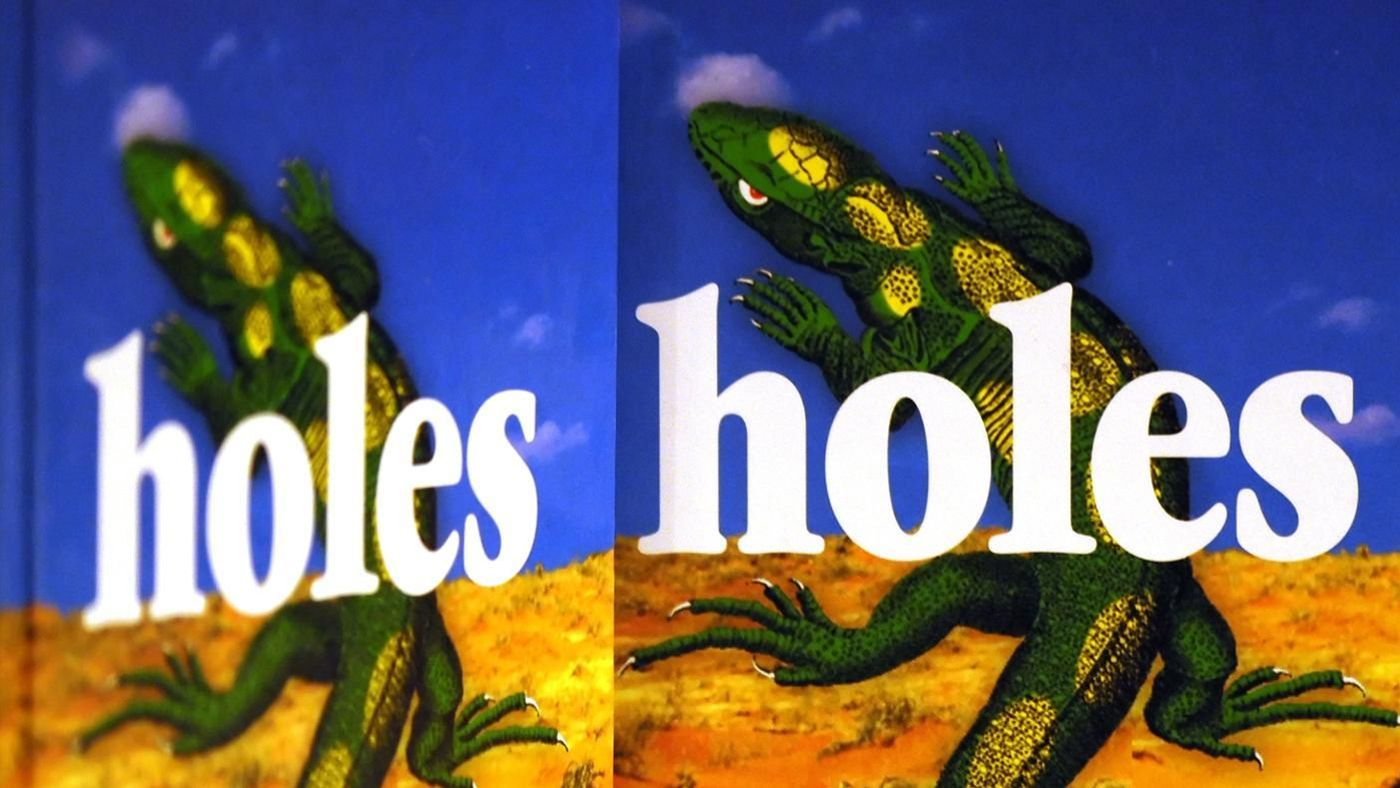 short book report on holes In the book titled holes (2002), by louis sachar, these actions are displayed once again to make a long story short, they turned out to be feeding, black holes.