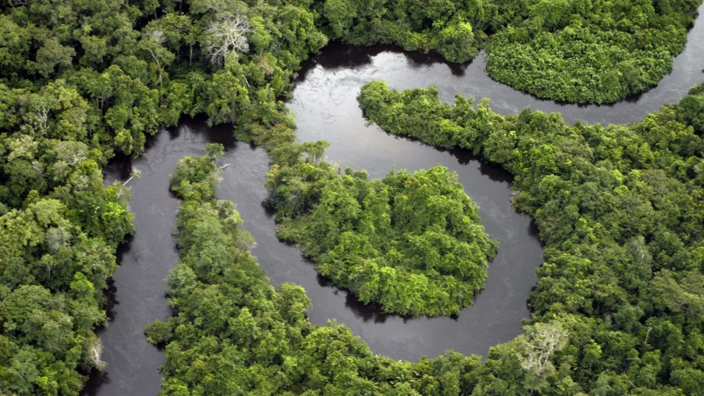 what types of bodies of water are found in a tropical rainforest