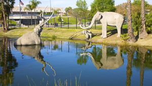 What Are the La Brea Tar Pits?