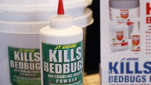 How Do You Kill Bedbugs?