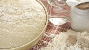 Where does baker's yeast come from?