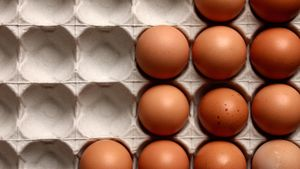 How Can You Test If an Egg Is Fresh or Hard-Boiled?