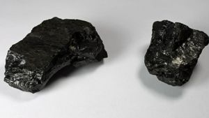 What is coal made out of?
