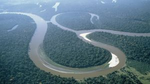 What Countries Does the Amazon River Go Through?