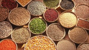 What are the different types of grains?