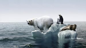 What Are Disadvantages of Global Warming?
