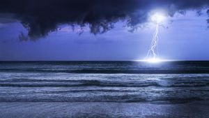 Do Fish Die When Lightning Strikes the Water?