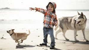 What Dog Breed Lives the Longest?