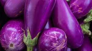 How do you know when an eggplant has spoiled?