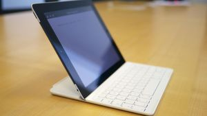 What Are the Functions of Input Devices?