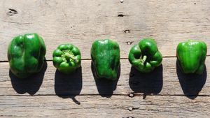 How Do You Grow Green Peppers?