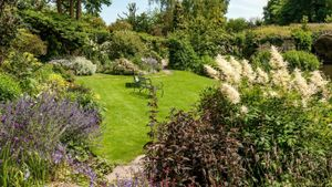 What Is Grown in a Traditional English Garden?