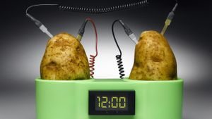 How does a potato conduct electricity?