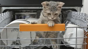 How many watts does a dishwasher use?