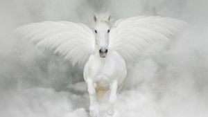 How is a pegasus drawn?