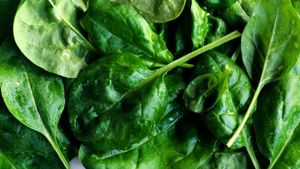 How Long Do You Boil Spinach?