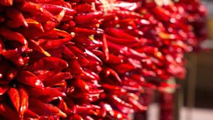 What Is the Main Difference Between Red and Green New Mexico Chili Peppers?