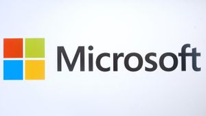 What Does the Microsoft Office Suite Consist Of?