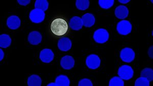 Does the Moon Have Quakes?