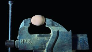 How Much Pressure Can an Egg Withstand?