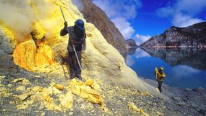 How much is sulfur worth?