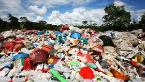 What Is Non-Biodegradable Waste?