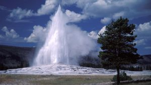 How often does Old Faithful erupt?