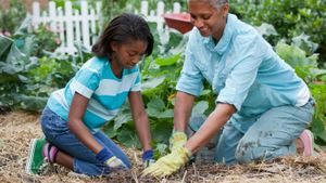 How Do You Prep Flower Beds for Spring?