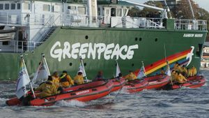 What is the purpose of Greenpeace?