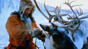How Do Tribes Live in Arctic Siberia?