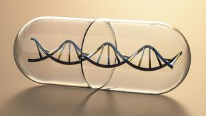 What Makes up the Sides of the Ladder of a DNA Molecule?